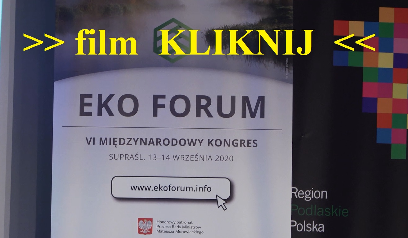 muskala eko forum film